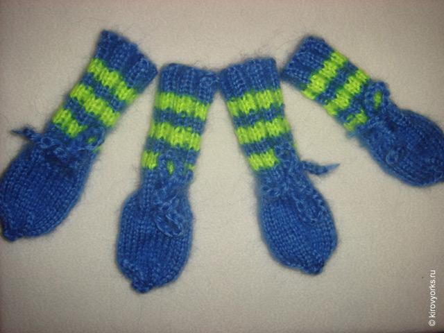как вязать носки для собаки